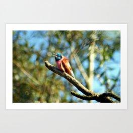 bee-eater 2 Art Print