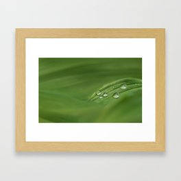 Water drops on green grass Framed Art Print
