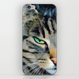 Angry Tabby Cat With Green Eyes iPhone Skin