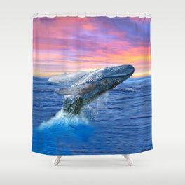 Breaching Humpback Whale at Sunset Shower Curtain