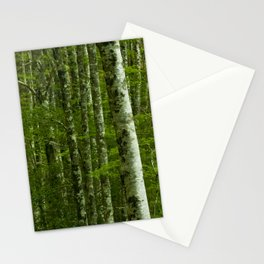 Nature photography. Irati Forest, Navarra. Spain. Stationery Cards