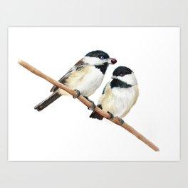 Black Capped Chickadees Art Print