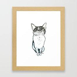 Bina Cat Framed Art Print