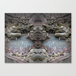 Mirrored Riverbed Canvas Print