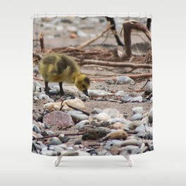 Gosling Shower Curtain