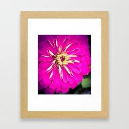 Flower 15 Framed Art Print