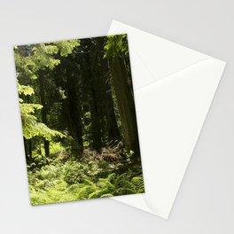 Cedar Forest Mystery Stationery Cards