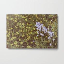 summergrass - one Metal Print