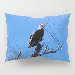Clear Sight (Bald Eagle) Pillow Sham