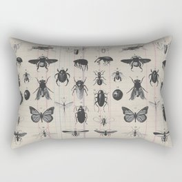 Vintage Insect Study on antique 1800's Ledger paper print Rectangular Pillow