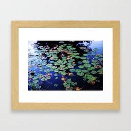 paramecium pond Framed Art Print