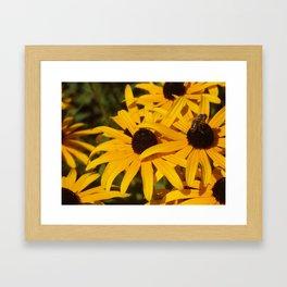 Bee & Autumn Yellow Flowers Framed Art Print
