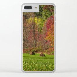 Lonely Bails of Color Clear iPhone Case