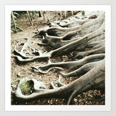 The roots of all goodness lie in the soil of appreciation for goodness Art Print