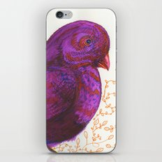 Dollar Store Dove iPhone & iPod Skin