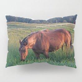 An Evening Chance Pillow Sham