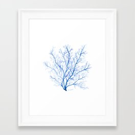 Navy Blue Coral Sea Fan #1 Framed Art Print