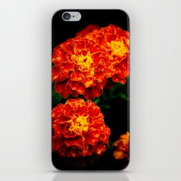Marigolds  iPhone Skin