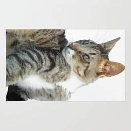 Tabby Cat Isolated Background Rug