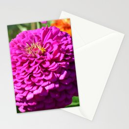 Summer Bloom Stationery Cards