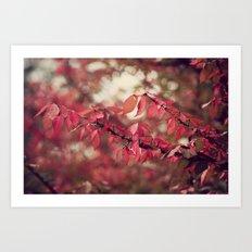 Crimson Blush Art Print
