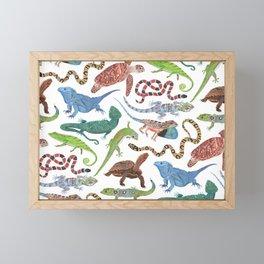 Endangered Reptiles Around the World Framed Mini Art Print