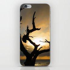 Stark iPhone & iPod Skin