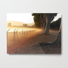 Summer Fog in the Breeze Metal Print