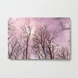 Naked trees, pink cloudy sky Metal Print