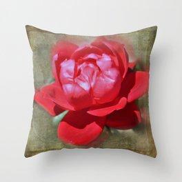 A Single Queen's Rose Throw Pillow