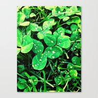 irish Canvas Prints featuring Irish by Kelly Dillon