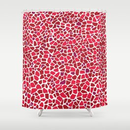 Terrazzo AFE_T2019_S8_12 Shower Curtain