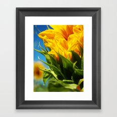 sunflower take 2. Framed Art Print