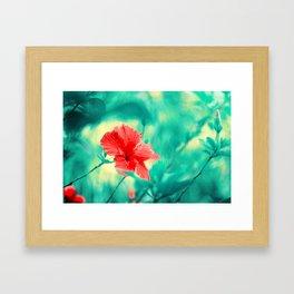 Tropical Exuberance II Framed Art Print
