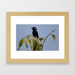 I am a Singer Framed Art Print