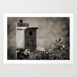 Number 62 Bird House Black and White Art Print