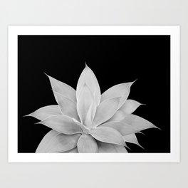 Gray Agave on Black #2 #tropical #decor #art #society6 Art Print