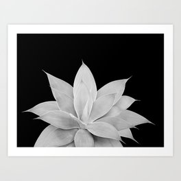 Gray Agave on Black #2 #tropical #decor #art #society6 Kunstdrucke