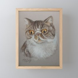 Exotic Cat Portrait Tabby Cat Pastel drawing Sketch on grey background Decor for Cat Lover Framed Mini Art Print