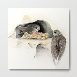 Swift - nesting bird on the Ligurian coast Metal Print