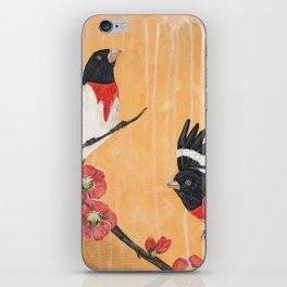 Rest Flowering Quince Rose-breasted Grosbeak iPhone Skin