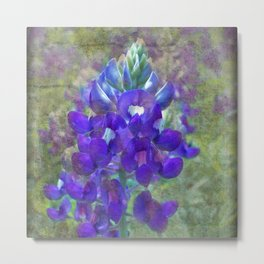 Bluebonnet Flower Metal Print