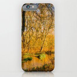 Kintbury Marshes iPhone Case