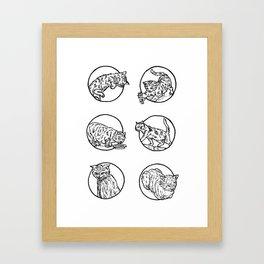 Cat lyf Framed Art Print