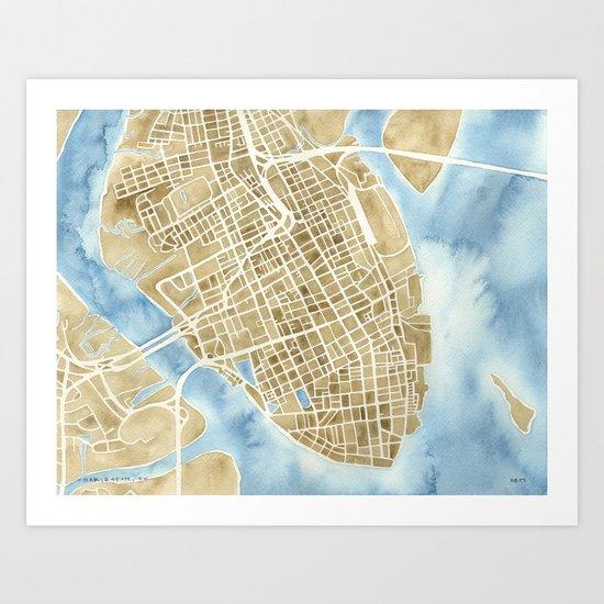 Charleston, South Carolina City Map Art Print Art Print