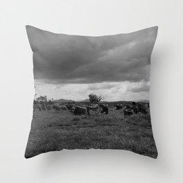 Plain of Jars, Laos Throw Pillow