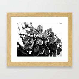 Jagged Shadow Play Framed Art Print
