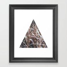 Grass, tall and brown Framed Art Print