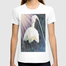 Shining Light T-shirt