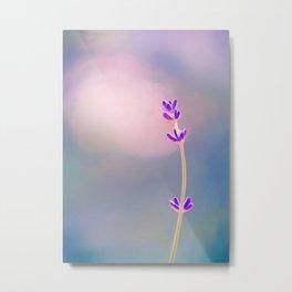 Delicate Purple Flower Buds Metal Print